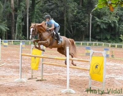 Clínica de salto com José Roberto Reynoso Fernandes Filho (19 a 22/01/2012)