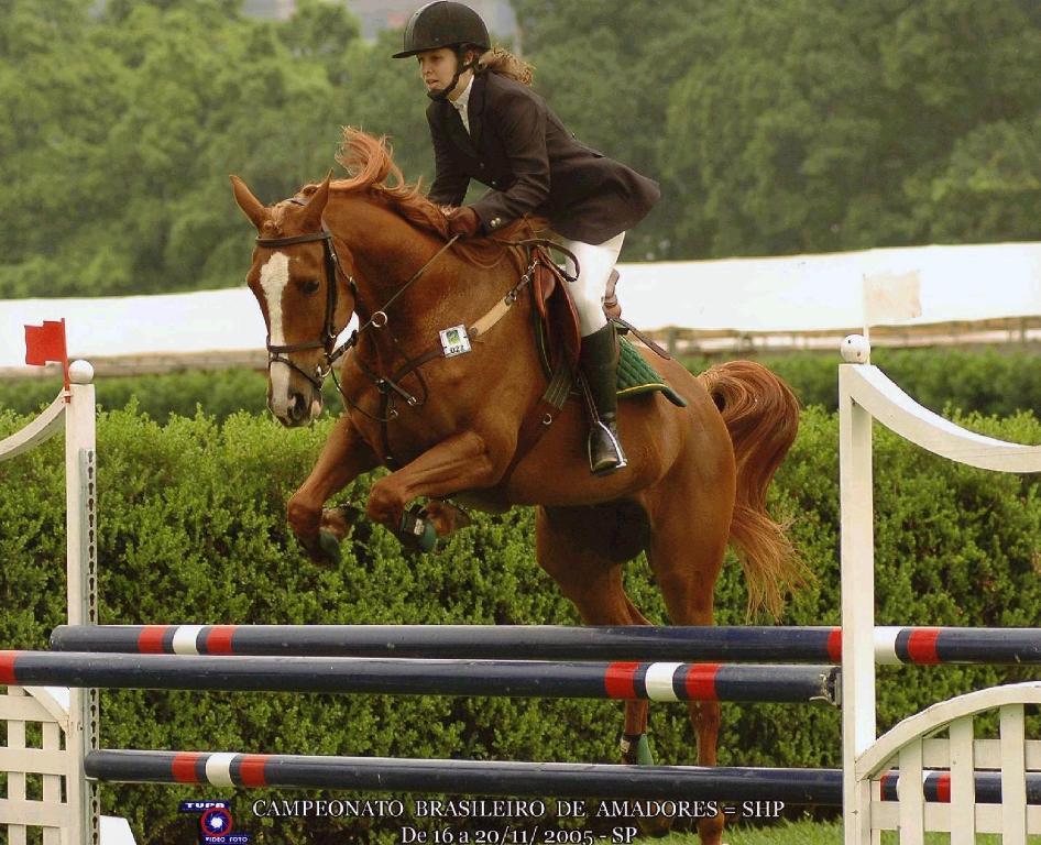 Biscoito, meu primeiro cavalo