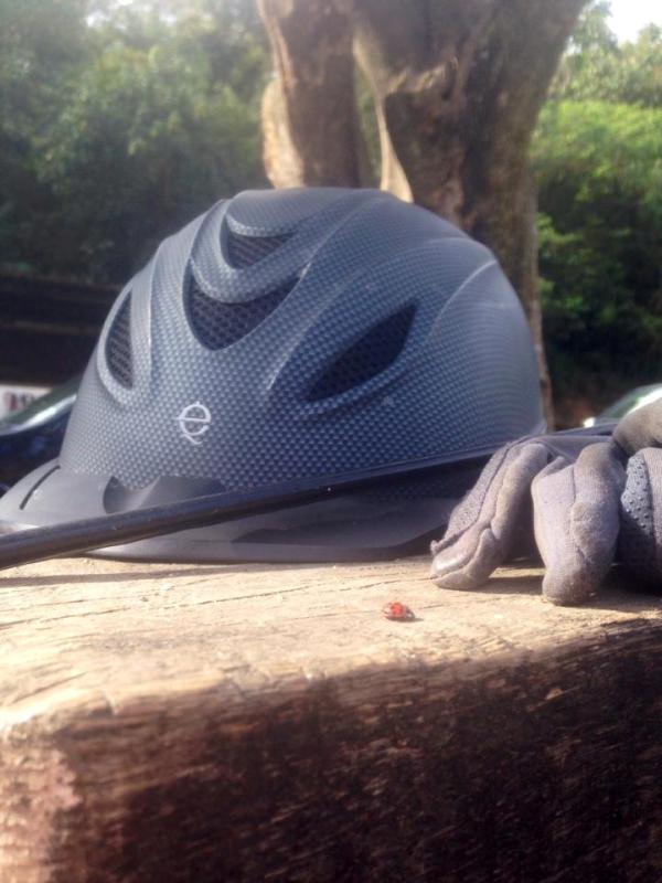 O fantasma do Hipismo Brasileiro!! O capacete…