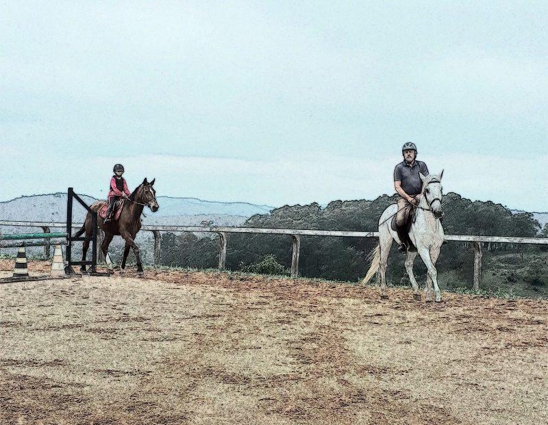 CUIDADO com as chamadas escolas de equitação!!!
