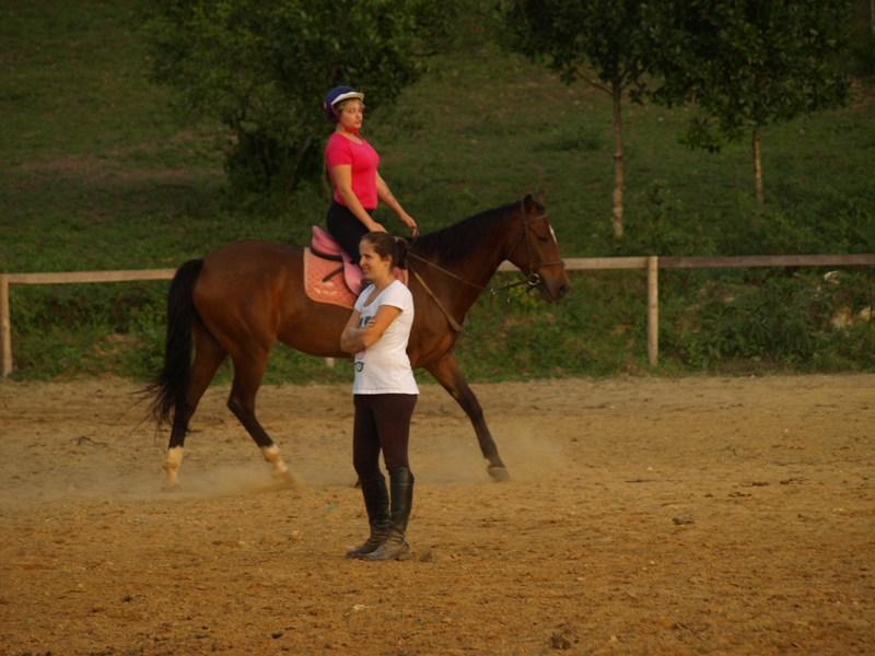 Aulas de equitação, hipismo, montaria, aprender a montar cavalo