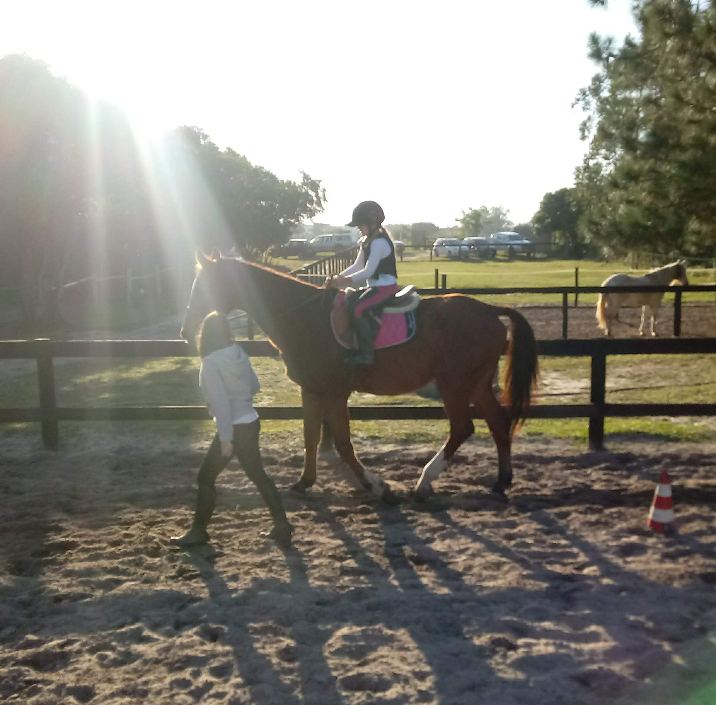 Escola de equitação, o primeiro passo para o mundo do cavalo