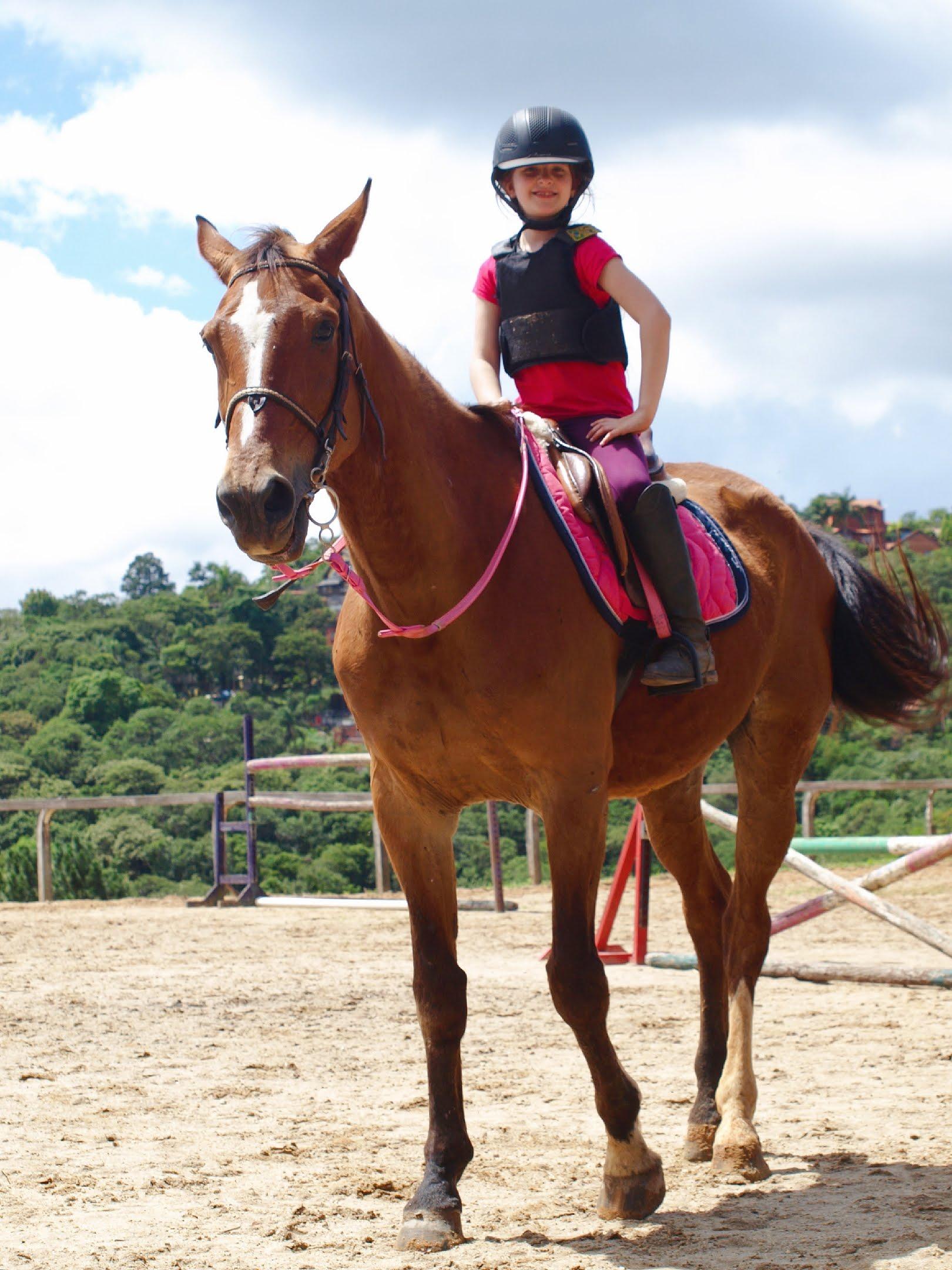 Quando é hora de aposentar seu cavalo?